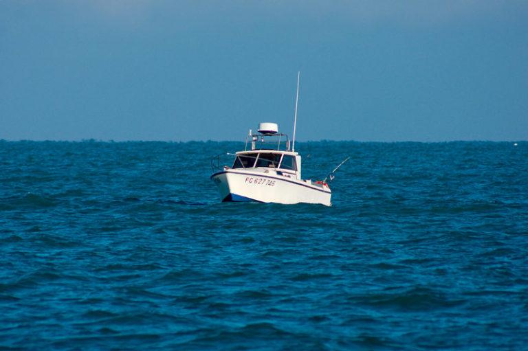 pêche en mer calvi